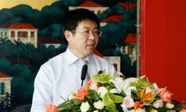 Zhonggu Shipping: Tonnage cascade hits China's domestic container trades