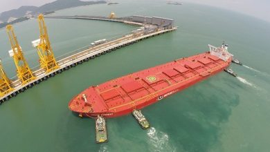 Photo of China on track to hit 1bn tons of iron ore imports for the year early