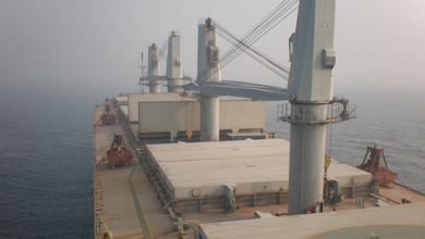 Photo of Cosco bulker carrying sulfur runs aground off Texas