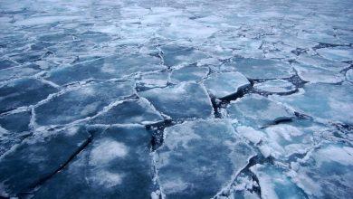 Photo of Shell ducks out of Norwegian Arctic oil bid