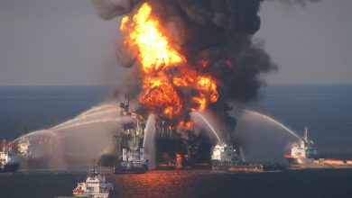 Photo of BP gives up its resistance to paying Deepwater Horizon damages to seafood industry