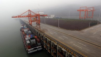 Photo of Chongqing Port Logistics Group and SDIC to jointly develop Guoyuan Port