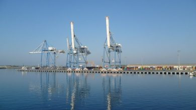 Photo of DP World and APM Terminals interested in Cyprus's Limassol Port