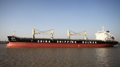 Photo of China Shipping Development to order three bulkers