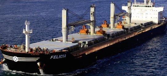 Bulk carrier runs aground in Delaware River
