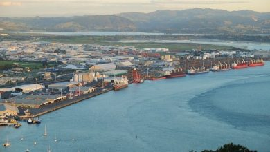 Photo of Tauranga bunker spill cleanup continues, Mobil promises full investigation