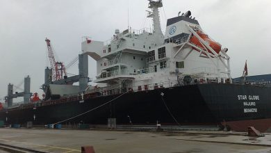 Photo of Globus sells panamax to pay back loan