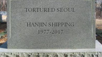 Photo of Post-Hanjin reality, one year on