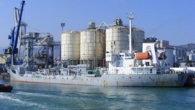 Photo of Romeo Group orders cement carrier at Ningbo Xinle