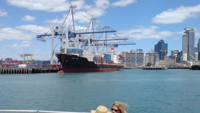 Photo of Maritime Union of New Zealand calls for methyl bromide ban