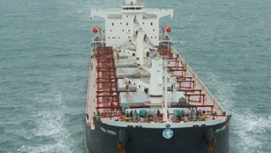 Photo of Mercator's creditors take action to sell bulker