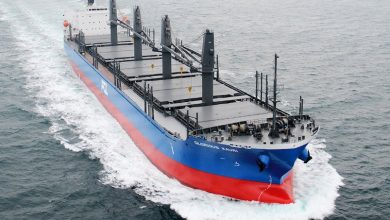 Photo of Cooperation rather than competition in dry bulk
