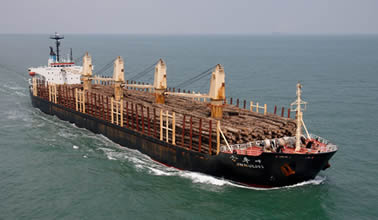 Cosco Shipping integrates wood shipping business