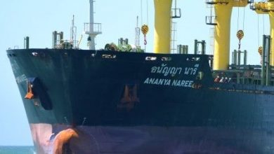 Photo of Precious Shipping sells another handy bulker