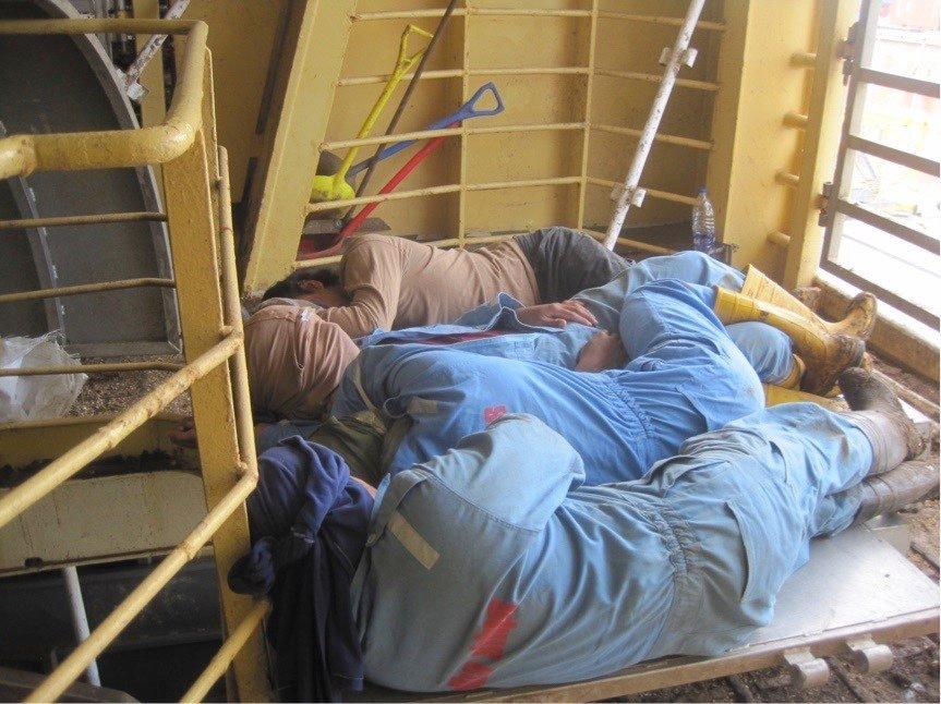 Seafarers Livestock