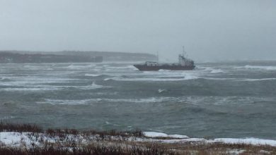Photo of Petroil Marine tanker runs aground off Canada