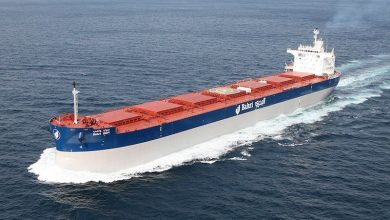 Photo of Bunge and Bahri form dry bulk venture