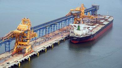 Photo of Cape armada descends on Brazil