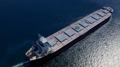 Photo of Xin Yuan Enterprises diversifies into dry bulk