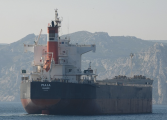 Diana Shipping seals new kamsarmax charter with Cargill at reduced rate