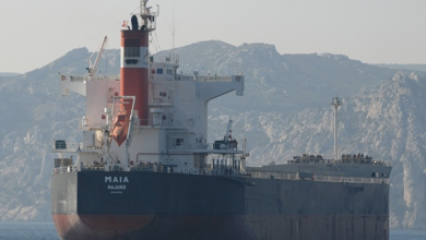 Photo of Diana Shipping seals new kamsarmax charter with Aquavita