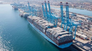 Photo of Maersk to expand collaborations with Lingang Group