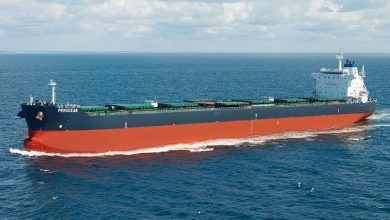 Photo of Weekly Broker: Bulker bump up fails to materialise
