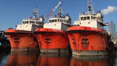 Photo of Kim Heng's Bridgewater Offshore buys two more Posh Terasea anchor handlers