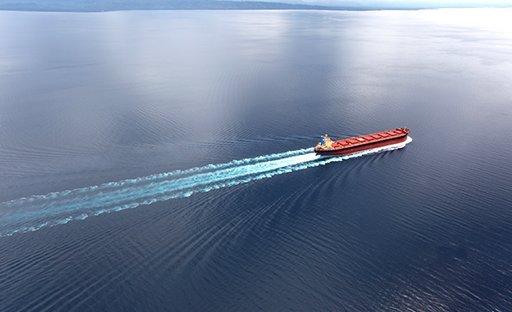 France calls for shipping speed limits