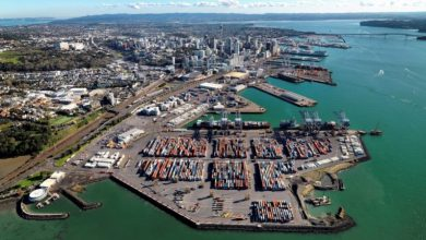 Photo of Crawler crane topples into the sea at Auckland Port