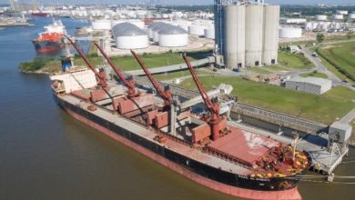 Photo of CTM's Supramax RSA grows by seven