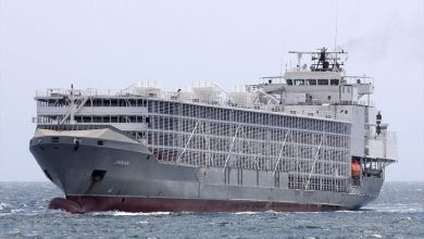Photo of Australian authorities take action against unstable livestock carrier