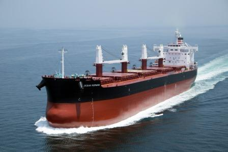 Neptune Dry continues ultramax buildup with Shoei Kisen deal