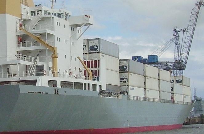 Reefer ships branded an endangered species
