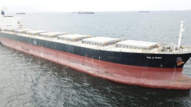 Photo of S'hail Shipping acquires two panamax bulkers
