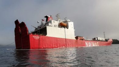 Photo of Cattle rescue from grounded Chilean ship moves ahead