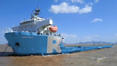 Photo of Roll Group grows fleet with module carrier addition