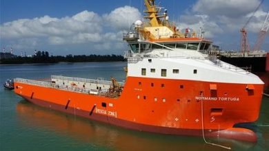 Photo of Solstad Offshore awarded PSV contract in New Zealand