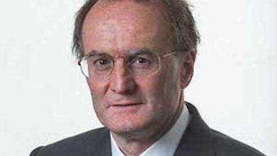 Photo of Former Wellard boss plans livestock return