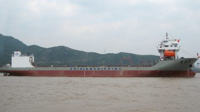 Photo of Wuxing Logistics and Zhixian Shipping partner up to build heavylift fleet