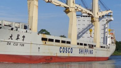 Photo of Cosco heavylift ship suspected of carrying nuclear arms detained in India
