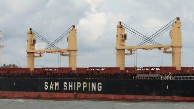 Photo of Union Marine entrusted with two SAM bulk carriers