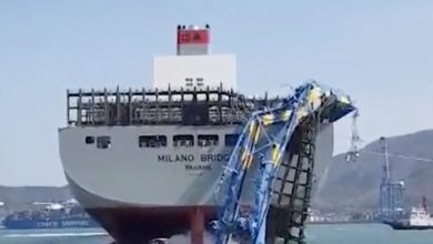 Photo of Busan berth will be offline for months after boxship prang takes out multiple cranes