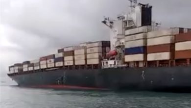 Photo of Iranian boxship and Indonesian bulker grounded after collision in Singapore Strait
