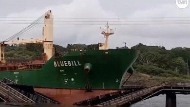 Photo of Bulk carrier takes out Panamanian rail bridge