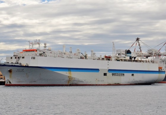 Live Animal Exports: Dirty deeds, done dead cheap