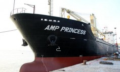 Asia Maritime Pacific merges with Sono Shipping