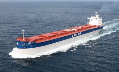 Bunge and Bahri form dry bulk venture