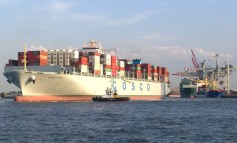 Beijing tells shipping lines to streamline further or be liquidated