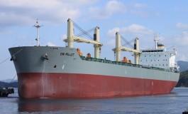 Deniz Nakliyati fleet sell-off thwarted as supramax deal collapses